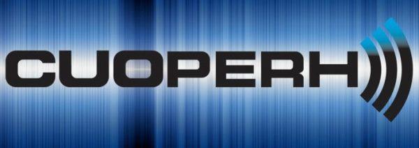 Amplificador Profesional Cuoperh E2000 300w Silver Line_4